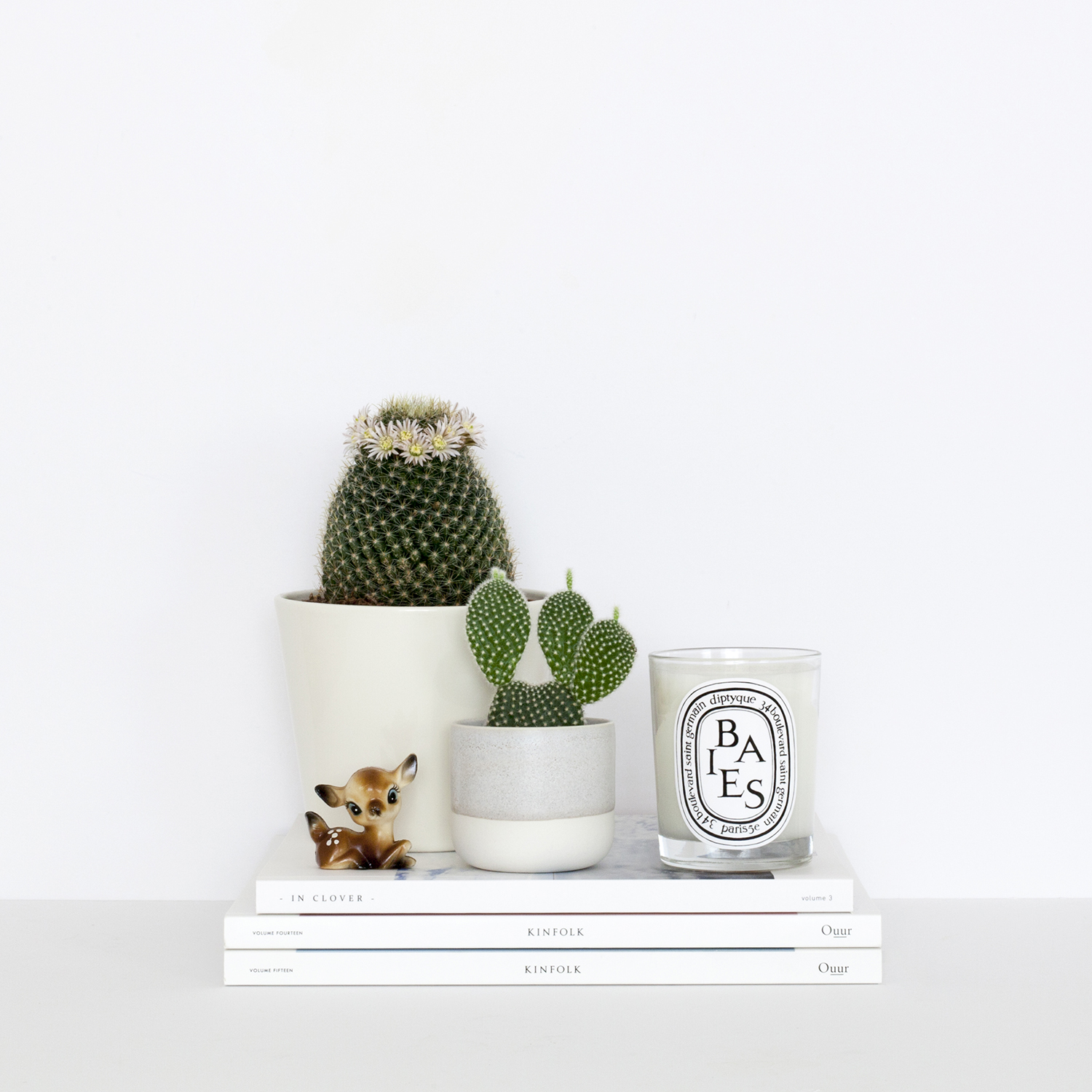 My Decluttering Tips | photo of cacti on top of magazines | natashadenness.co.uk