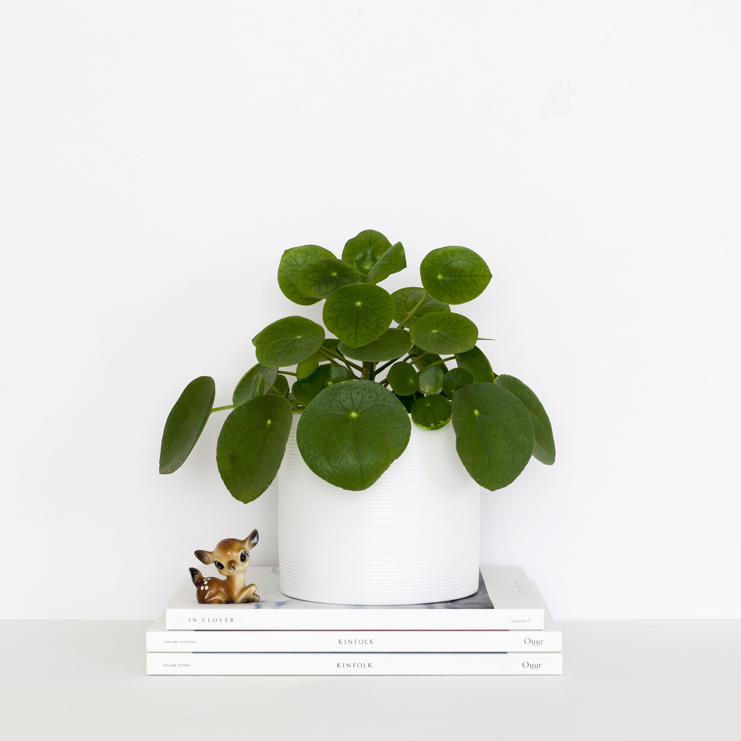 Ten Ways I Simplified My Life | photo of a pilea plant on a stack of magazines | natashadenness.co.uk