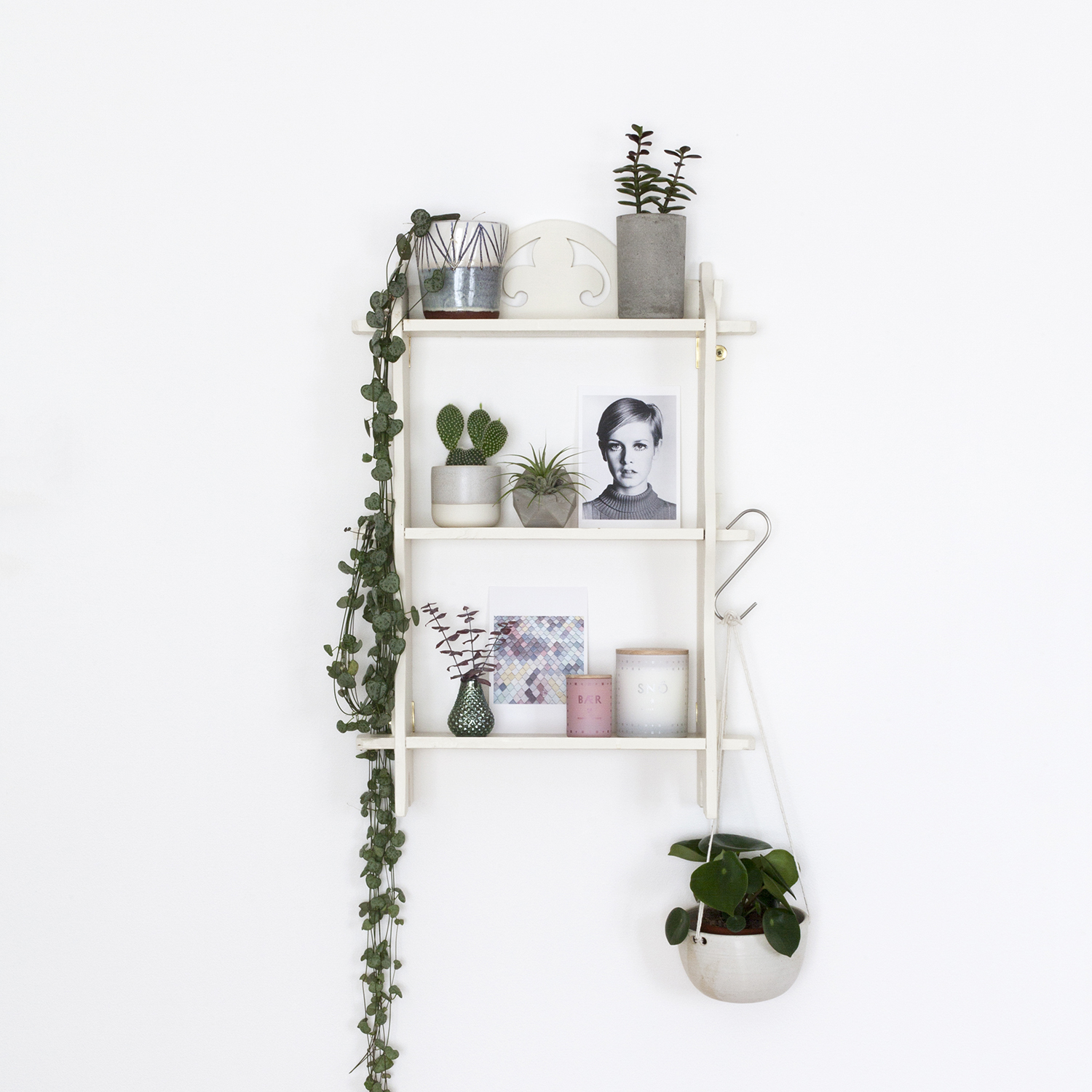 How to Build a Harmonious Week as a Freelance Creative | Photo of a shelf with houseplants | natashadenness.co.uk