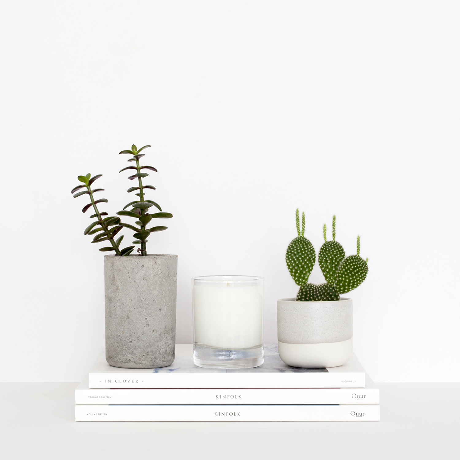 Useful Tips from 12 Successful Creative Business Owners | Natasha Denness Coaching | natashadenness.co.uk (Photo of plants and magazines)