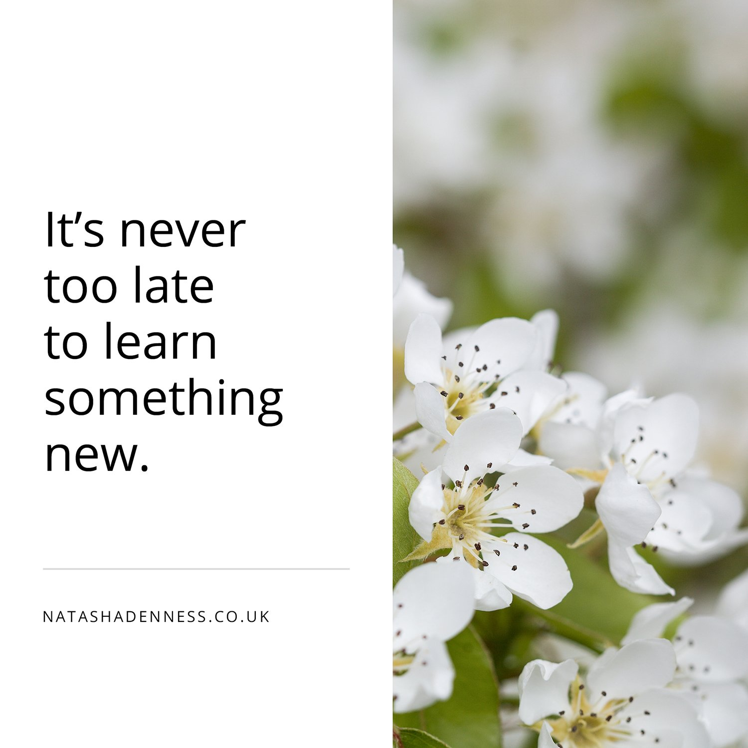 It's never too late to learn something new | Natasha Denness Coaching