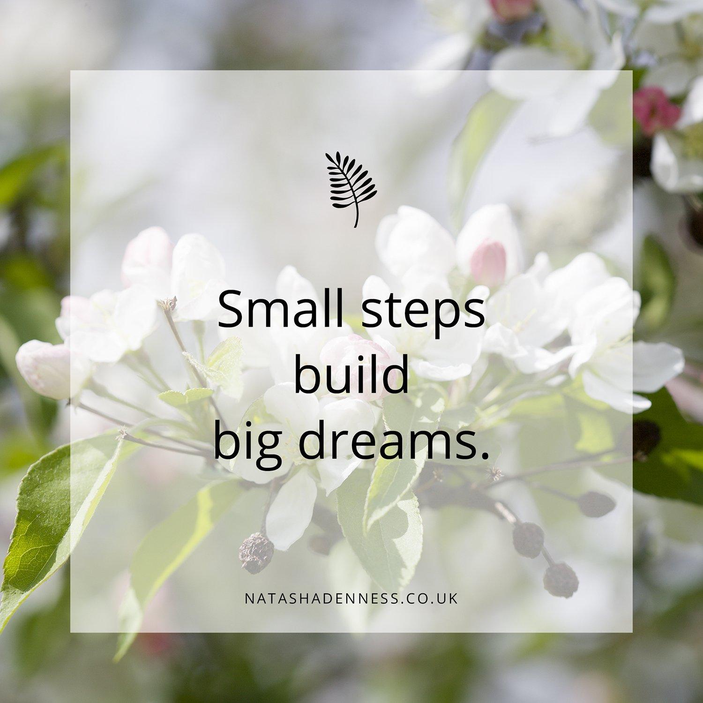 Small steps build big dreams | Natasha Denness Coaching