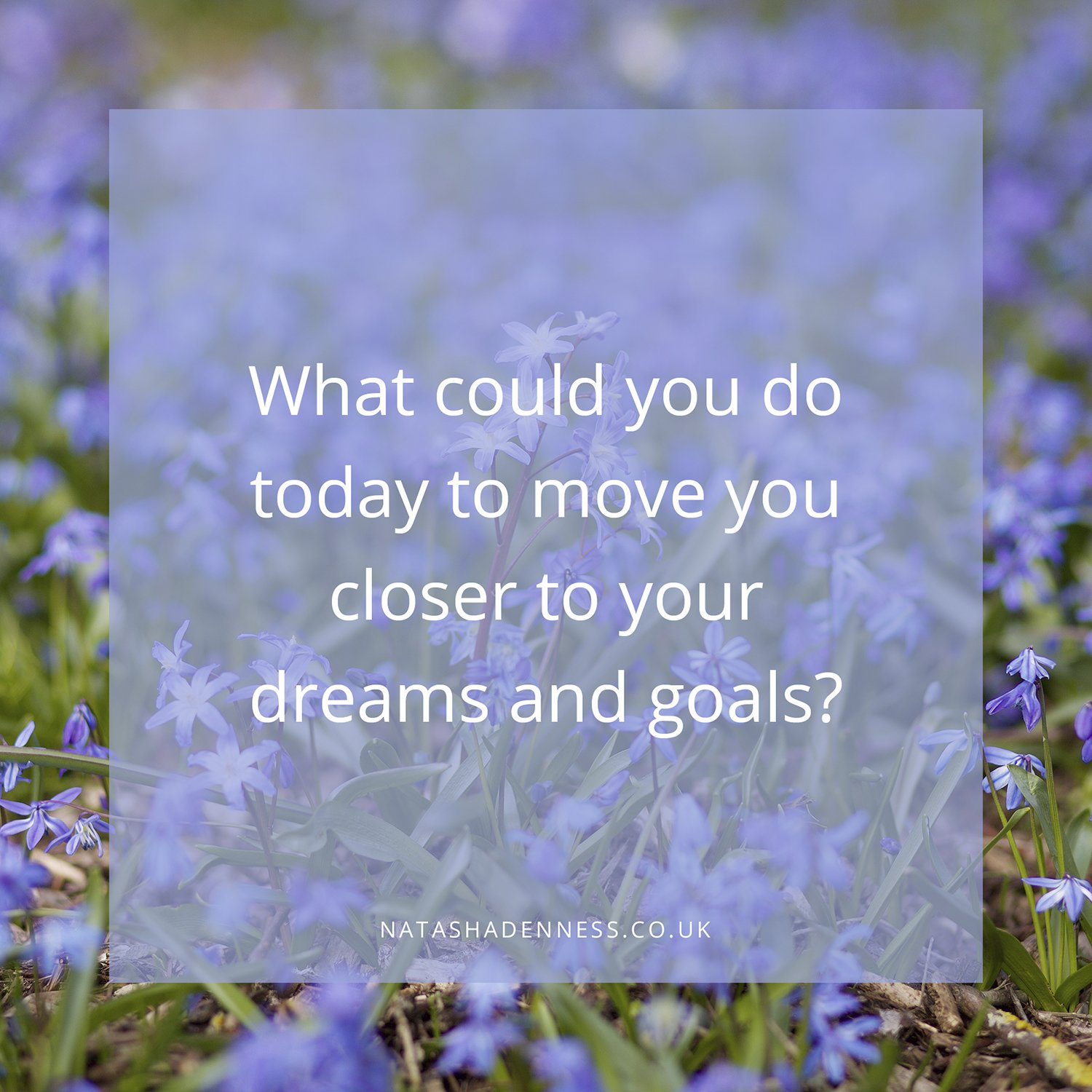 What could you do today to move you closer to your dreams and goals | Natasha Denness Coaching